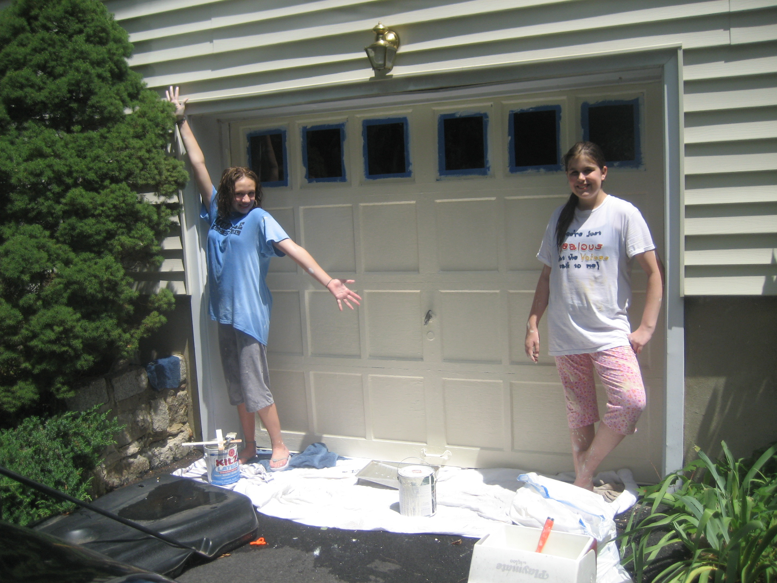 chicago paint garage refinishing doors ragsdale entry painted inc door blue