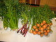 Celery, scallions, carrots.  Delicious tomatoes, peppers and squash later in the summer.